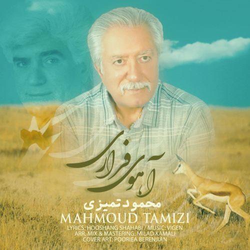 دانلود موزیک جدید محمود تمیزی آهوی فراری