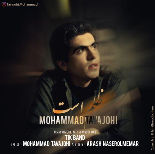دانلود موزیک جدید محمد توجهی ظلم است